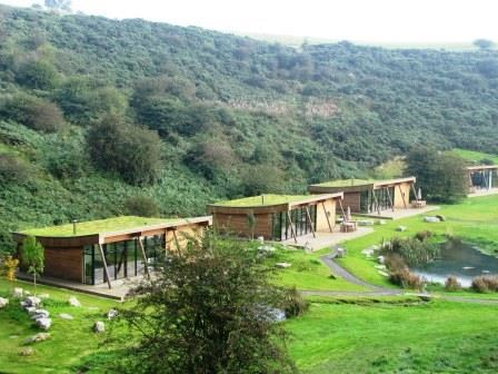 Can EPDM also be combined with a green roof? | Hertalan